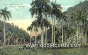 Republic of Cuba Cuban Landscape  Cuban Landscape