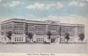 Michigan Negaunee High School