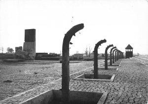 Poland Auschwitz Birkenau Monument to Victims of the Nazi Terror Postcard