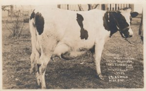 RP; MONTICELLO , Wisconsin, 00-10s ; Champion Milk Cow