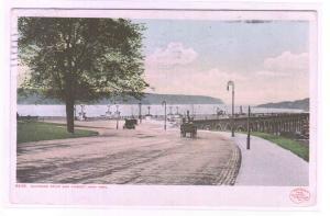 Riverside Drive & Viaduct New York City NY 1908 Phostint postcard