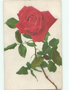 Very Old Foreign Postcard BEAUTIFUL FLOWERS SCENE AA4894