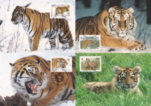 Siberian Tiger Russian WWF Stamp First Day Cover 4x Postcard s