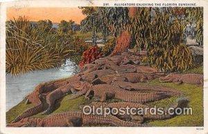 Florida, USA 1930 Missing Stamp & paper on back corner wear a lot of paper gl...