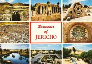 BT13916 Jericho city of palms in the Jordan Valley           Israel