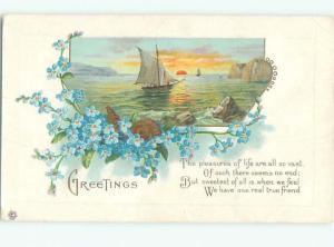 Divided-Back BEAUTIFUL FLOWERS SCENE Great Postcard AA2347