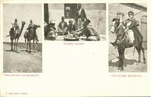 israel palestine, Native Bedouins Desert on Camel and Horseback (1899) Postcard