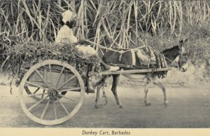 Donkey Cart , BARBADOS , 00-10s