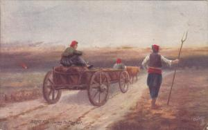 TUCK #7691, Village Life in ARMENIA, Going to Market, Bull-drawn wagon, 00-10s