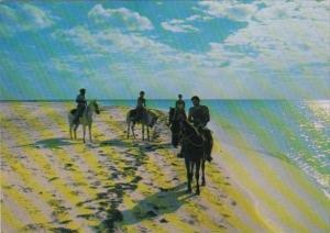 Cuba Isola di Cayo Largo Horseback Riders On The Beach
