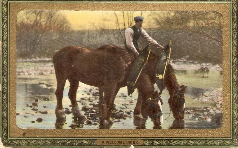 Horses. A welcome drink Tuck Framed Gem Glosse Farm Life Series PC # 721