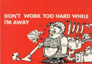 Dont Work Too Hard While I'm Away Comic Housewife Wife In Apron Postcard