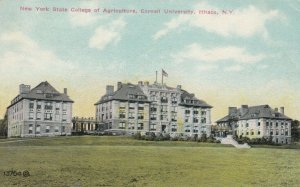 ITHACA , New York , 1910 ; NY State College of Agriculture, Cornell University