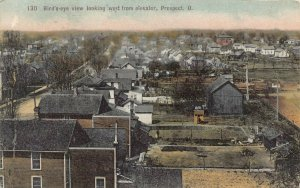 LPS42 PROSPECT Ohio Aerial View looking West from Elevator Hand Colored Postcard
