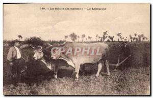 Old Postcard Folklore The farmer Beef