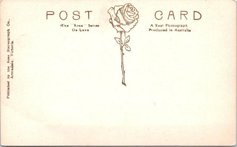 RPPC ARMADALE?, AUSTRALIA  An Australian BULLOCK TEAM   c1910s Rose Postcard