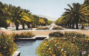 RP: Hand-colored, Fes , Morocco ,  Les Jardins Avenue Hascan II, 00-10s
