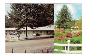 NC Blowing Rock Azalea Garden Motel North Carolina Vinntage Postcard