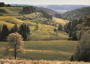 Switzerland, Suisse, Zürcher Oberland bei Sitzberg 1994 used Postcard