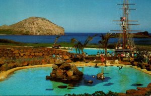 Hawaii Oahu Sea Life Park Leeward Isles Pool