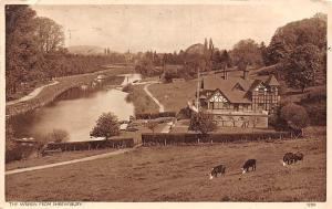 The Wrekin from Shrewsbury, River, Cattle, Greetings 1953