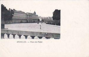 BRUXELLES.- Place des Palais , Belgium , 00-10s