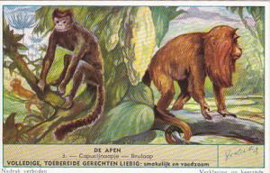 Liebig S1604 Monkeys II No 3Capucijnaapje - Brulaap
