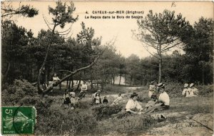 CPA CAYEUX-sur-MER (BRIGHTON) - Le Repos dans le Bois dde Sapins (514730)