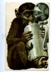223157 GERMANY ADVERTISING BEER monkey w/ mug undivided back