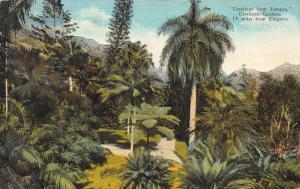 Greetings from Jamaica, Castleton Gardens, Early Postcard, Used in 1936