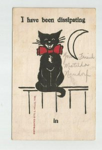 POSTCARD ~ Cat ~ Crescent Moon ~ I've Been Dissipating ~ Mailed 1907 ~ RL Wells