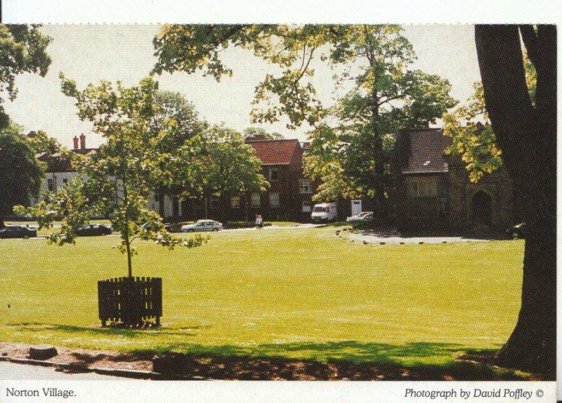 Northamptonshire Postcard - Norton Village - Ref 19012A