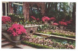 Bellingrath Gardens Mobile Alabama AL Vintage 1958 Postcard