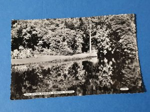 Vintage Real Photo B&W Hampshire Postcard, The Water Garden Exbury Gardens DD5