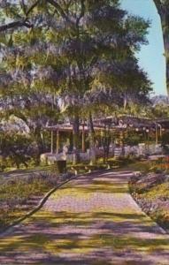 Florida Dunellon Quaint Brick Path At Rainbow Springs