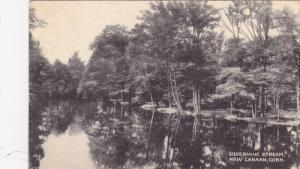 Silvermine Stream , NEW CANAAN , Connecticut , 20-30s