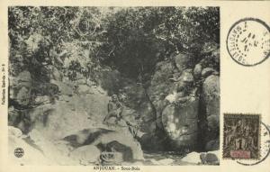 comoros comores, Sultanate of Ndzuwani ANJOUAN, Sous-Bois (1910) Postcard