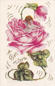A Gift Of Love Red Rose With Young Angels 1908