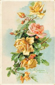 LP21   Catherine Klein Flowers Floral Postcard Artist Signed Pink Yellow Roses