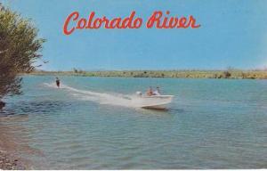 Water Skiing on the Colorado River AZ, Arizona