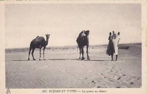 Le priere au desert , 00-10s