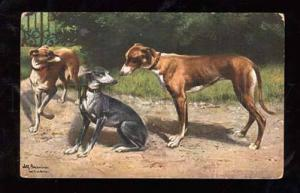 014442 Lovely GREYHOUND Dogs by SCHONIAN vintage TSN 537-4 PC