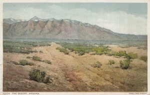 The Desert , Arizona , 1911 ; Fred Harvey 14934