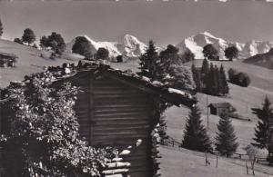 Switzerland Beatenberg Amisbuehl Eiger Moench und Jungfrau Photo