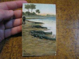 Vintage Alligator Postcard Tuck Series #2645 Look Pleasant 1913 Postmark