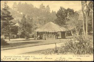 new zealand, DUNEDIN, Botanical Gardens (1910s)