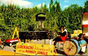 Florida Miami Liberachi Chimpanzee Show At Monkey Jungle 1958