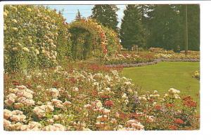 Rose Gardens, Stanley Park  Vancouver British Columbia,