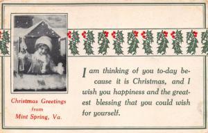 MINT SPRING VIRGINIA~CHRISTMAS GREETINGS POSTCARD 1913