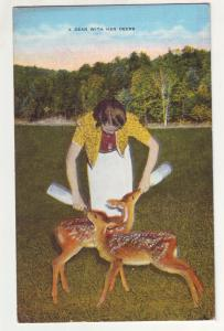 P737 ca1950,s young girl and fawns,a dear with her deers